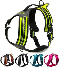 Truelove Hybrid Dog Harness Walking + Car Adjustable, Reflective, Padded, Safe