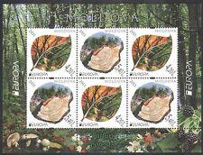 Moldova 2011 Europa/Forêts/Arbres/HIBOU/Cerf/Feu/Environnement/nature 6 V M/S n37597