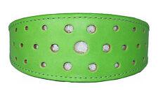 Green Leather Whippet Collar Greyhound Collar Circle Glitter Design Dog Collar