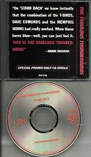 Jimmie Vaughan FABULOUS THUNDERBIRDS Stand Back PROMO DJ CD Single DAVE EDMUNDS