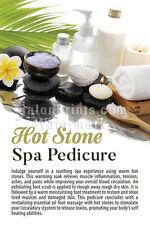 Manicure Spa Beauty Massage Waxing Wall Nail Salon Mesh Vinyl Poster || P-213