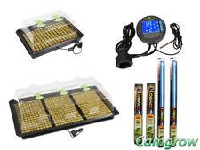 X-Stream Heated Propagator With T5 Lights & Digital Thermostat Hydroponics