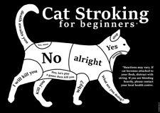 Cat Stroking For Beginners Mini Poster 44x32cm