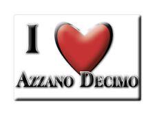 CALAMITA FRIULI VENEZIA GIULIA MAGNETE SOUVENIR I LOVE AZZANO DECIMO (PN)