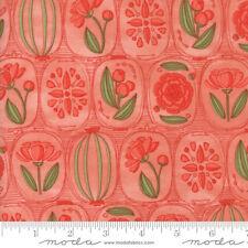 Moda Fabrics - Blushing Peonies Petal 48611 14 by Robin Pickens - Quilting