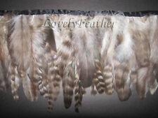 Coque feather fringe grey chinchila colour 10 yards trim