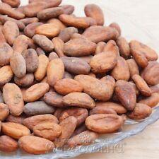 Какао-бобы отборные. Элитные, отборные, необжаренные какао-бобы сорта Тринитарио