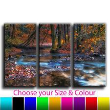 Floral Woodland Stream Landscape Canvas Art Print Treble Box Framed Picture 36
