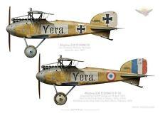 Print Albatros D.III, Ltn Wichard, Jasta 24, capturé en 1917 (by D. Douglass)