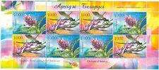 ORCHIDEE - ORCHID FLOWERS BELARUS 2006 sheetlet