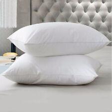 White Hotel Luxury 65cm x 65cm Square Euro Continental Microfibre Pillow