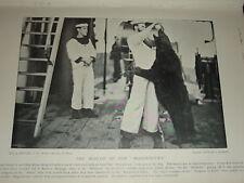 1896 HMS MAGNIFICENT PET BEAR DRINKING CONDENSED MILK