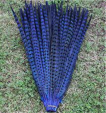 10-100 Pcs 30 -35 cm / 12-14 inch natural pheasant tail feathers Royal blue