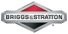 Briggs & Stratton Carburador - Kit de Reparación