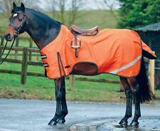 Boston Pony Horse Ride On Waterproof Hi Viz Safety Reflective Exercise Sheet Rug