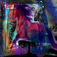 8 x 8 Art Colorful Horse Ceramic Mural Backsplash Bath Tile #1602