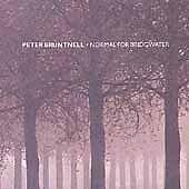Peter Bruntnell, Normal for Bridgwater, Good