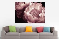 Beautiful Peonies Flower /High Quality Canvas wall art Australia made decor