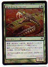 MTG 4X JAPANESE FOIL INNISTRAD AMBUSH VIPER MINT