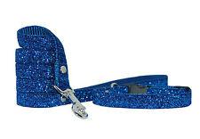 bleu roi brillant petit chien moyen Chio Collier & PLOMB Set 25.4cm- 38.1cm 5/8
