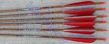 Beman Center Shot Arrows 4