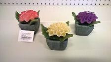 Candela Candele Cera Decorative Fiore
