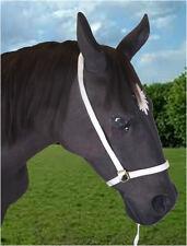 "Officiel libby's sangle show halter 8"" ou 12"" nez-cheval/poney cheval licol"
