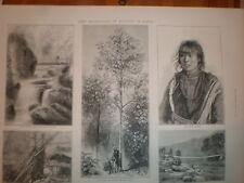 Quinine in India Darjeeling Bengal 1872 print