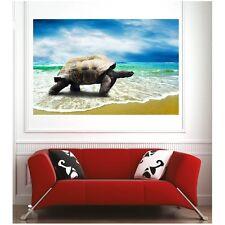 Affiche poster tortue géante 65425399 Art déco Stickers