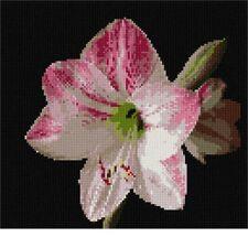 Amaryllis  Needlepoint Kit or Canvas (Floral/Flower/Nature)