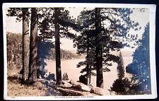 BIG BEAR LAKE CA ~ 1930's BIG BEAR LAKE THRO' THE PINES~Real Photo PC  RPPC