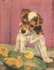 "Fox Terrier ""Wire"" - Dog Print - Diana Thorne"