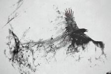 60770 raven bird flying smoke black white Wall Print Poster CA