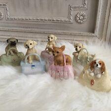 Dog in a Handbag Ornament Figurine Gisela Graham Pug Chihuahua Labrador Puppy