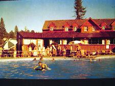 Big Bear Lake Peter Pan Club Postcard 1955