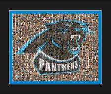 Carolina Panthers Mosaic Print Art  Using Over 75 Player Photos. Handmade