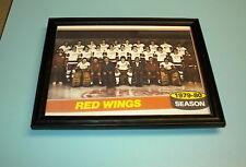 1979-80 DETROIT RED WINGS TEAM COLOR PRINT
