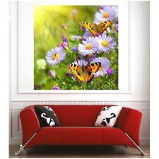 Affiche poster fleurs papillons 27614965