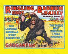 RINGLING BROS BARNUM & BAILEY 1938 GARGANTUA Vintage Lithograph Restoration