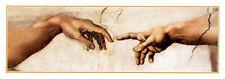 The Creation of Adam  Michelangelo Art Print Poster