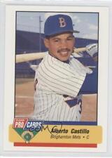 1994 Fleer ProCards Minor League #706 Alberto Castillo Binghamton Mets Card