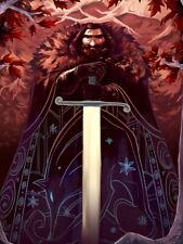Ned Stark TV Series Cool Artwork Huge Giant Print POSTER Plakat