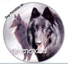 Aufkleber Motiv 1 Groenendael Belgischer Schäferhund Autoaufkleber Sticker