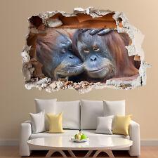 Wildlife APE orangutanes Pegatinas de Pared 3D Mural de Arte Decoración Hogar Sala Oficina TV2