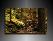 Bild aus der Naturlandschaft, Wald, Kunstdruck, Wandbilder, Leinwandbilder, N132