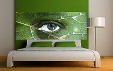 Papier peint tête de lit oeil nature 3668 Art déco Stickers
