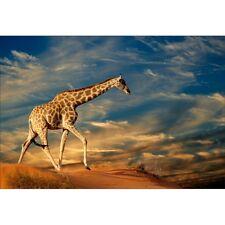 Stickers muraux déco : girafe 1478
