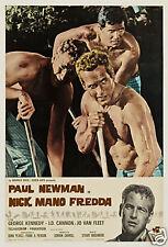 Cool hand Luke Paul Newman cult movie poster print #13