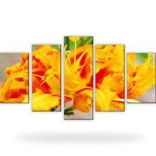 Tulpe Blume Pflanzen Gelb Rot Makro Leinwand Bild XXL