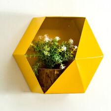 Wall Mounted Iron Hexagon Flower Plant Display Rack Planter Storage Unit